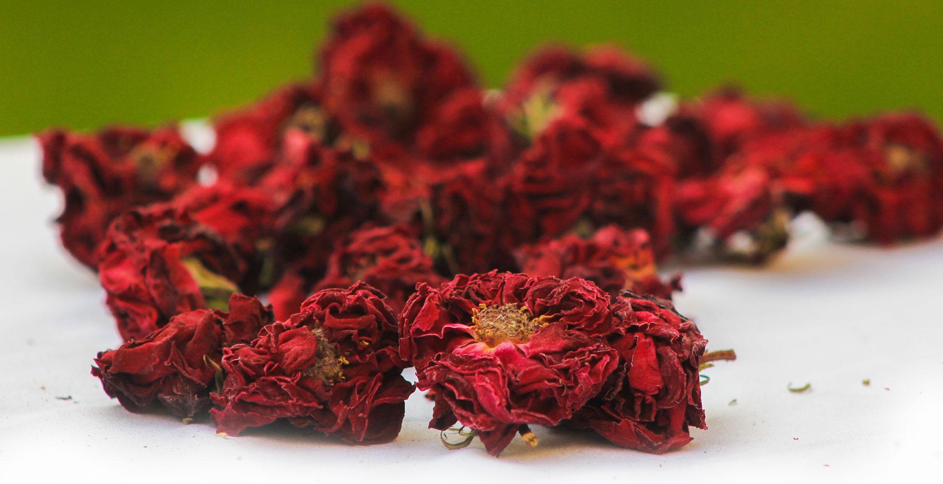 Herbs – Kohenoor International