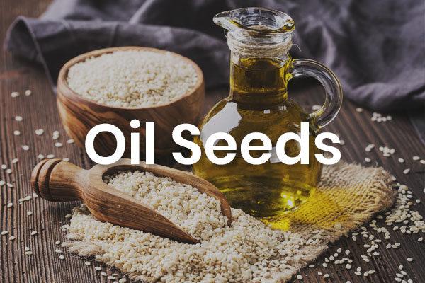 -Oil Seeds-